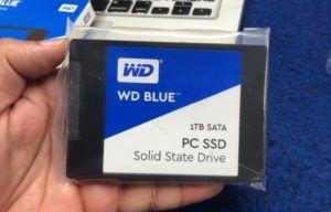 WD Blue SSD Size